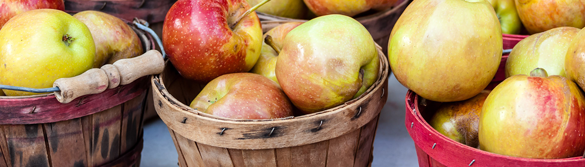 Apples_shutterstock_132281366_slider